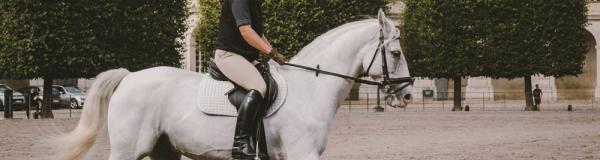 Vous êtes un professionnel de l'équitation ?