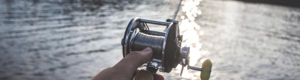 Vous êtes un professionnel de la pêche ?