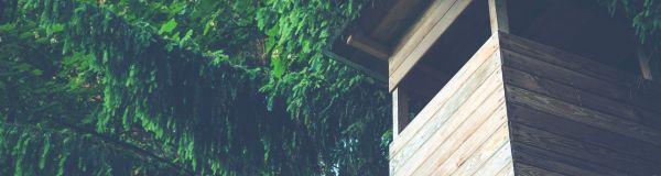Vous êtes professionnel des séjours en cabanes dans les arbres ?