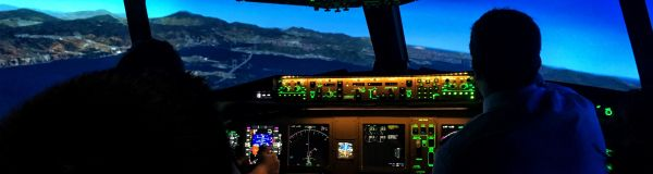 Vous êtes un professionnel de simulateur de vol ?