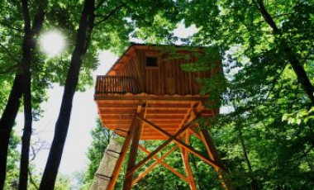 Passez une nuit de cabane dans les arbres en Bretagne!