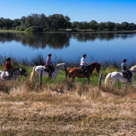 Stage d'équitation d'une semaine pour adolescent en pension complète