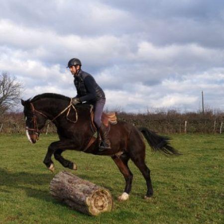 Cours particulier d'équitation 1h