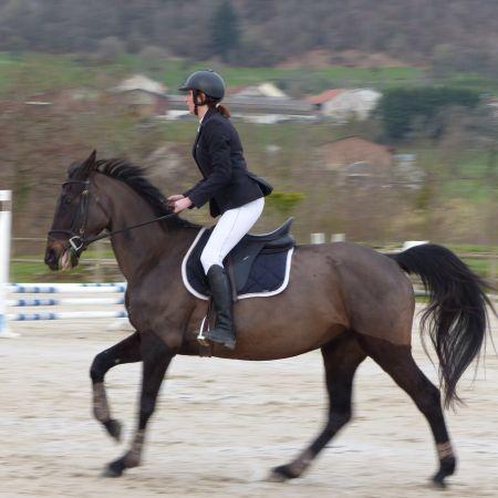 Cours particuliers - 1 h d'équitation (non adhérents)