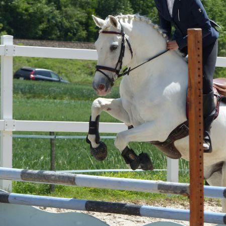 Cours particuliers - 1 h d'équitation (adhérents).