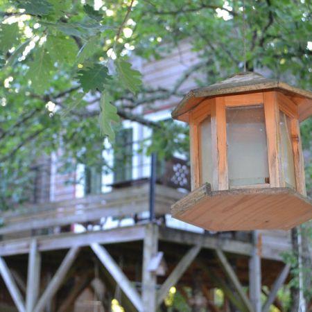 Séjour dans une cabane perchée dans les arbres