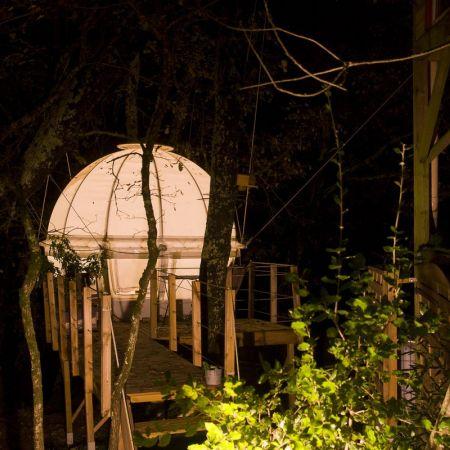 Une nuit en amoureux dans une bulle suspendue dans les arbres
