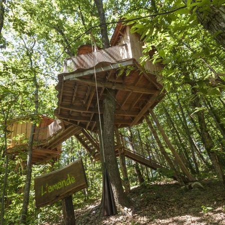 Bon cadeau semaine - Cabane dans les arbres