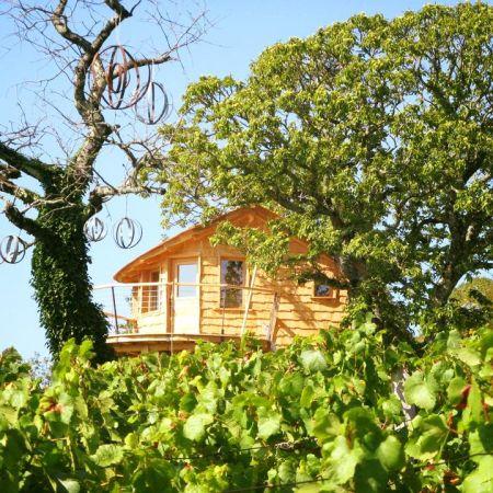 Séjour insolite en Cabane Perchée chez un paysan vigneron dans le vignoble de Château Chalon