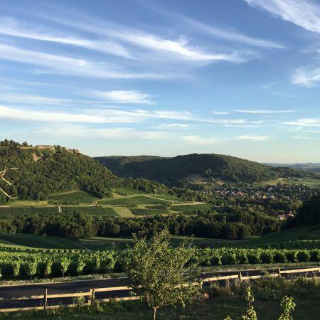 Présentation du Vignoble Jurassien et dégustation des Vins du domaine certifiés AB