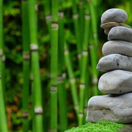 Séance de Shiatsu ou Massage Détente au choix (1h)