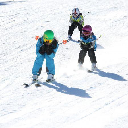 Leçon individuelle 1h30 Ski Alpin et Snowboard