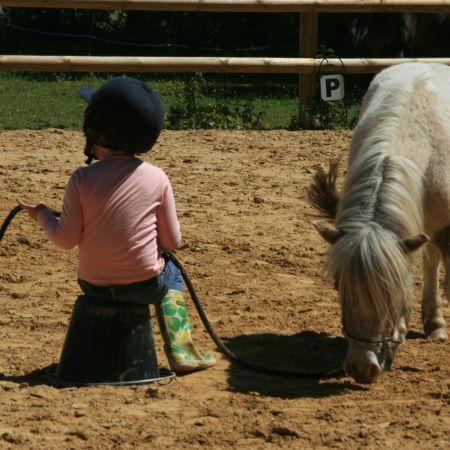 Balade poney pédagogique