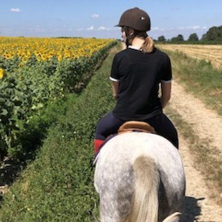 Atelier découverte de l'équitation