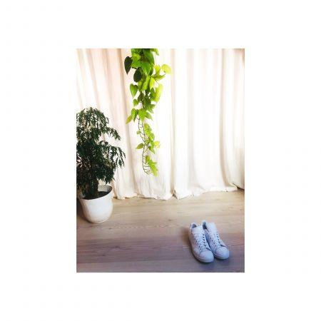 Réflexologie Plantaire - 1h00