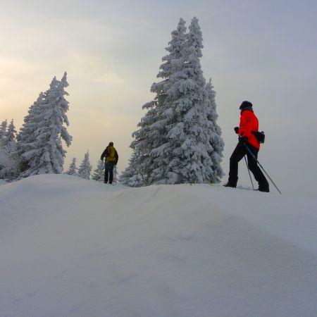 Balade en Ski de randonnée nordique