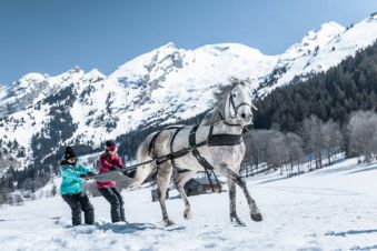 Ski joëring Performance image 2