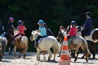 Stage Cheval/poney 5 demi journées image 3