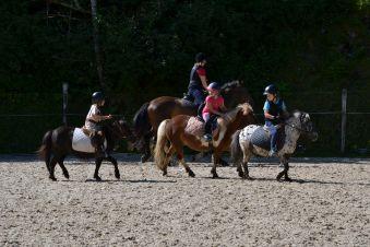 Stage Cheval/poney 5 demi journées image 2