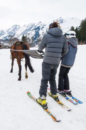 Balade Ski-Joëring (1h) image 1