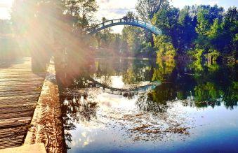 Nuitée Romantique à Chanaz avec Vue sur le Canal de Savières image 4