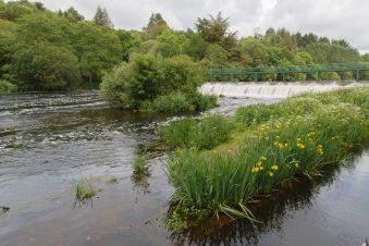 Une journée de balade fluviale image 11