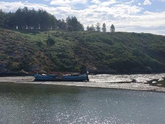 Croisières sur les Iles du Morbihan image 15