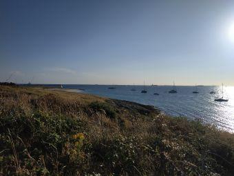 Croisières sur les Iles du Morbihan image 11