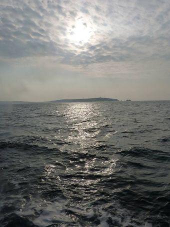 Croisières sur les Iles du Morbihan image 2