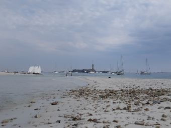 Croisières sur les Iles du Morbihan image 28
