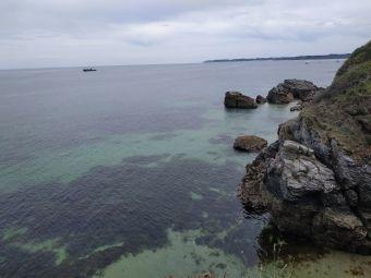 Croisières sur les Iles du Morbihan image 19