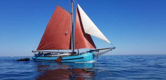 Croisières sur les Iles du Morbihan image 1