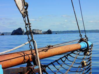 Croisières sur les Iles du Morbihan image 6