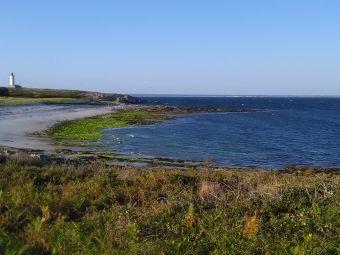 Croisières sur les Iles du Morbihan image 23