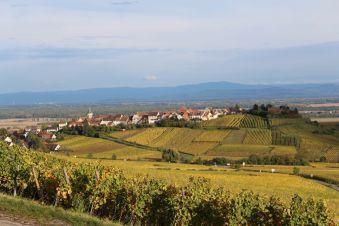 Séjour Alsace image 5
