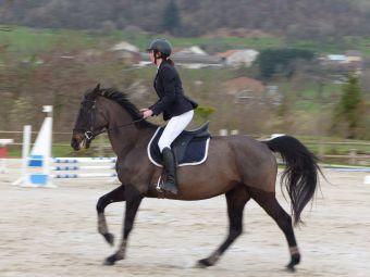 Cours particuliers - 1 h d'équitation (non adhérents) image 1