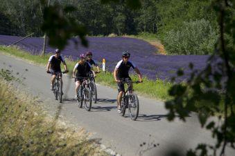 Balade Guidée à vélo électrique - 1/2 journée image 1