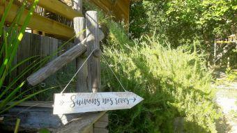 Séjour dans une cabane perchée dans les arbres image 10