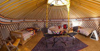 Séjour pour 3 à 5 personnes sous une yourte mongole image 2
