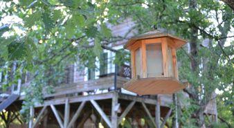 Séjour dans une cabane perchée dans les arbres image 4