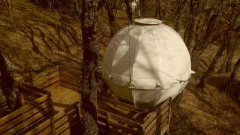 Séjour dans une bulle suspendue dans les arbres image 5
