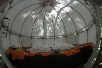 Séjour dans une bulle suspendue dans les arbres image 2