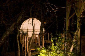 Séjour dans une bulle suspendue dans les arbres image 6