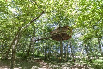 Bon cadeau privilège - Cabane dans les arbres image 4