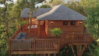 Séjour romantique - Cabane de Prestige avec Jacuzzi et Sauna privatifs image 15