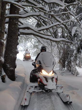 Randonnée motoneige - Forêt - 40mn image 2
