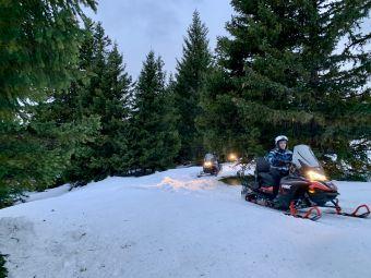 Pack Exploration : randonnée motoneige en forêt + pistes (1h30) image 2