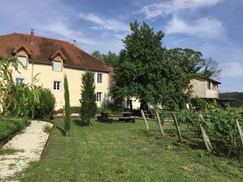 Séjour en chambre d'hôte au coeur du vignoble de Château-chalon chez un paysan vigneron image 5