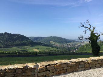 Séjour en chambre d'hôte au coeur du vignoble de Château-chalon chez un paysan vigneron image 7