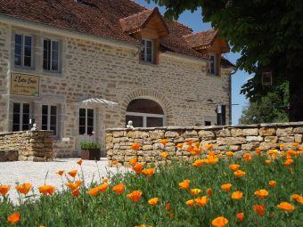 Séjour en chambre d'hôte au coeur du vignoble de Château-chalon chez un paysan vigneron image 2